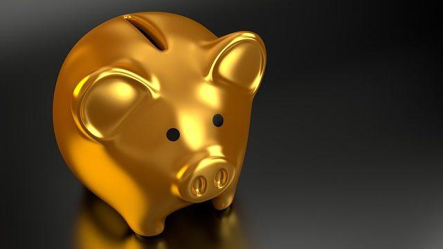 金を呼ぶ豚